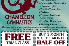 ChameleonGymnastics_117